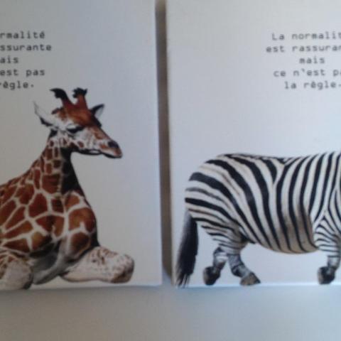 Troc 2 petits tableaux design et originaux - Tableaux originaux design ...